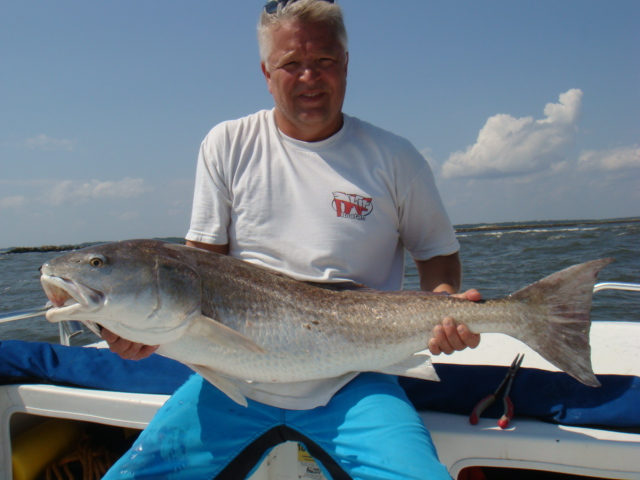 Photo gallery past catches reel action fishing charters for Reel action fishing charters