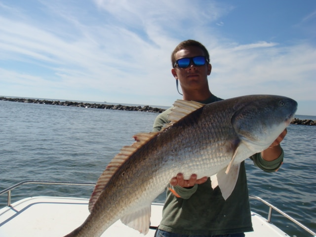 What you 39 ll catch our captains reel action charters for Myrtle beach surf fishing